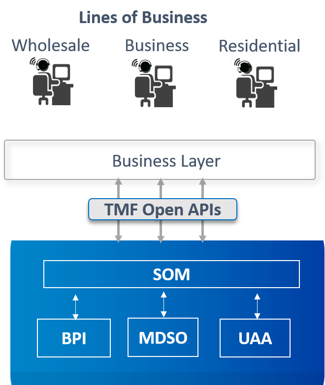 Diagram showing the lines of busines for Service Order Management