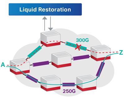 Liquid Restoration diagram